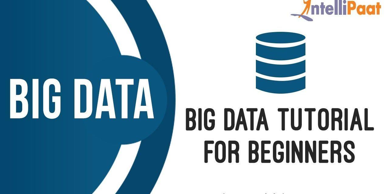 Big Data Tutorial For Beginners | What is Big Data | Big Data and Hadoop Tutorial | Intellipaat