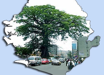 Freetown and the great Cotton Tree