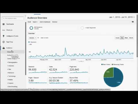 What's Most Important in Google Analytics?
