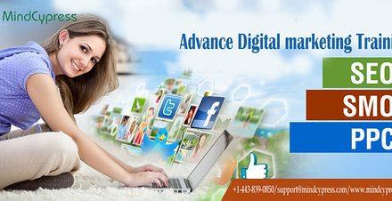 Digital Marketing Services Digital marketing training in dubai ,mindcypress,jpeg