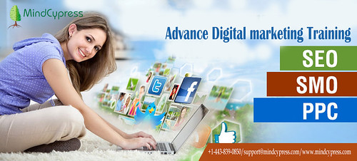 Digital Marketing Services Digital marketing training in dubai ,mindcypress,jpeg